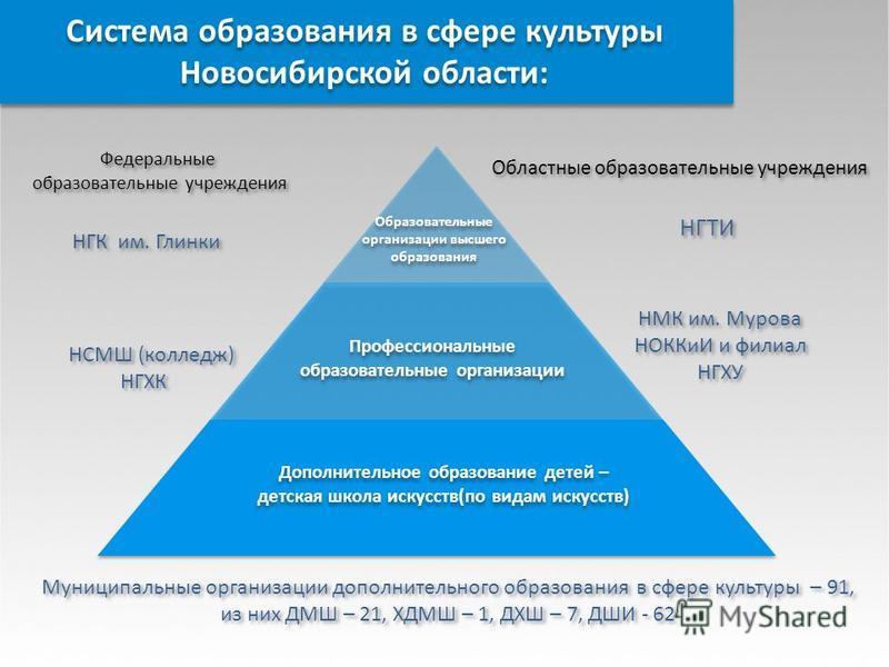 Система образования в сфере культуры Новосибирской области: Образовательные организации высшего образования Профессиональные образовательные организации Профессиональные образовательные организации Дополнительное образование детей – детская школа иск