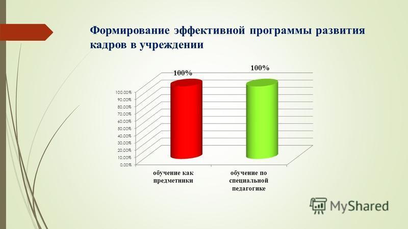 Формирование эффективной программы развития кадров в учреждении 100%