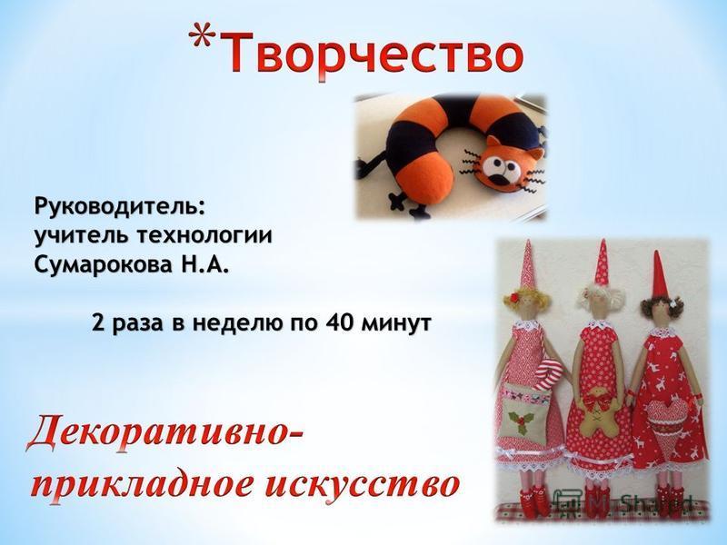 Руководитель: учитель технологии Сумарокова Н.А. 2 раза в неделю по 40 минут