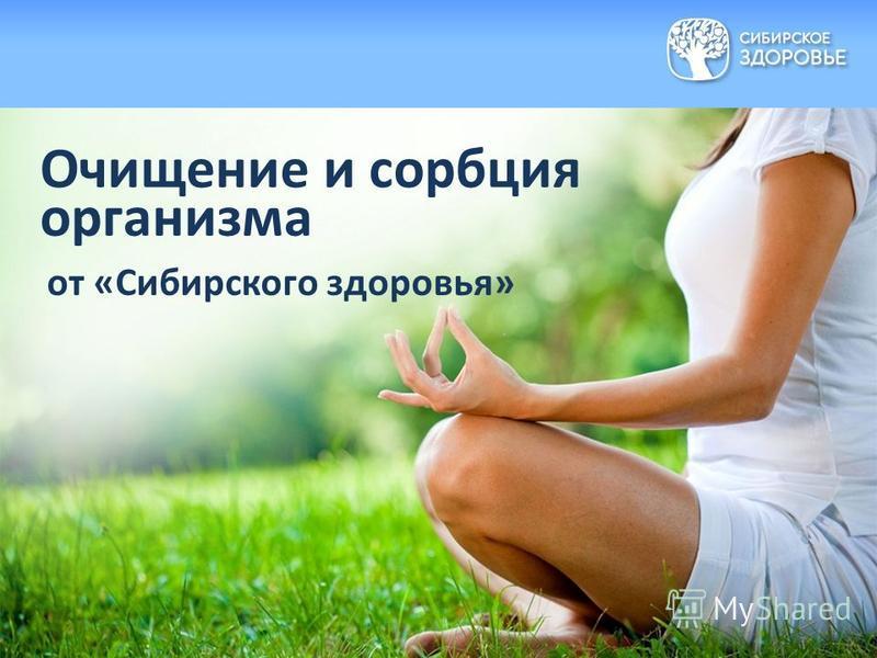 Очищение и сорбция организма от «Сибирского здоровья»