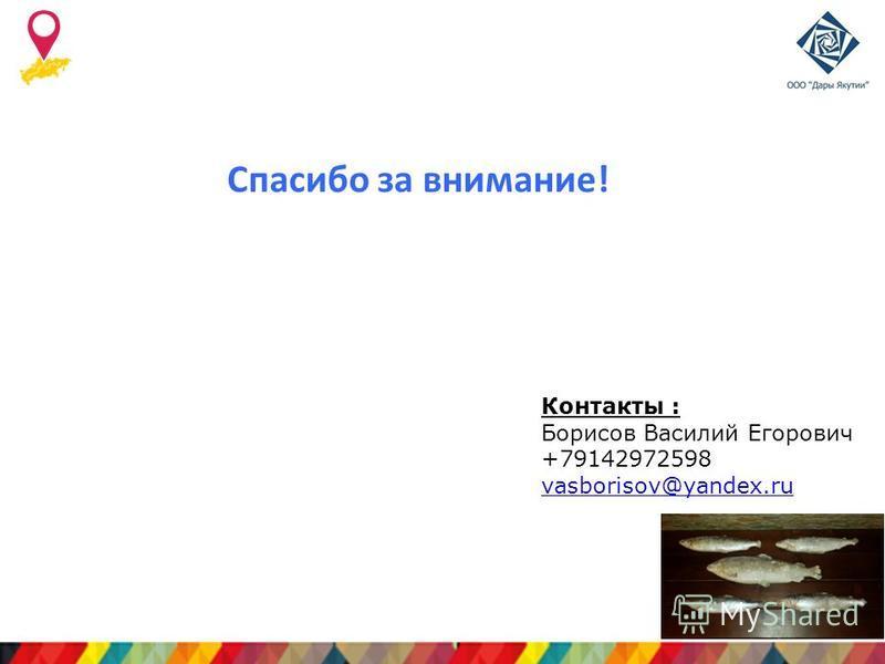 Лого компании Спасибо за внимание! Контакты : Борисов Василий Егорович +79142972598 vasborisov@yandex.ru