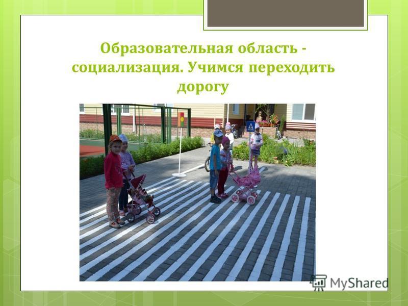 Образовательная область - социализация. Учимся переходить дорогу
