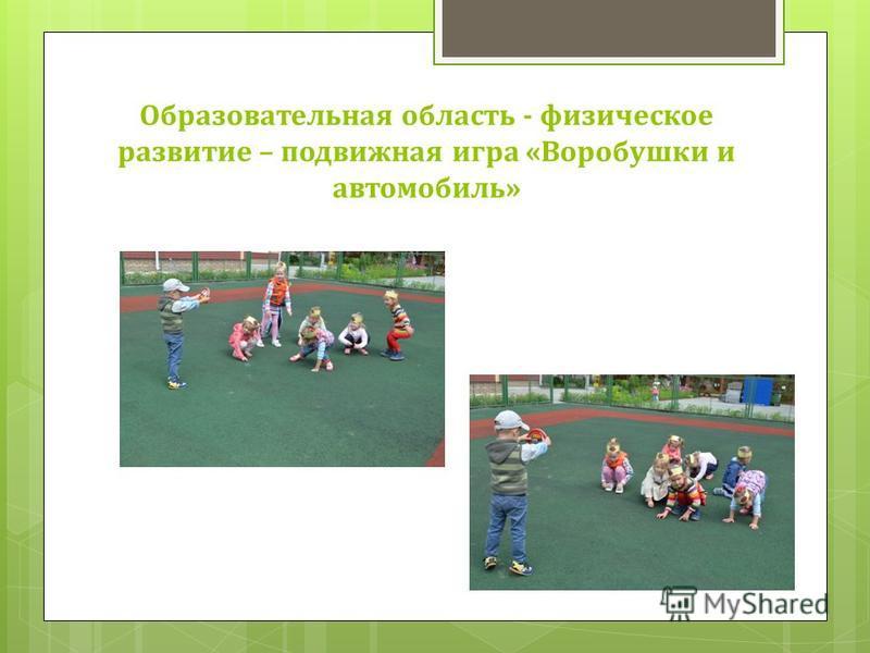 Образовательная область - физическое развитие – подвижная игра «Воробушки и автомобиль»