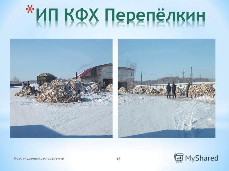 Новоандреевское поселение 18