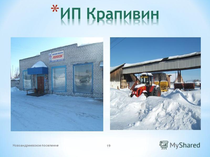 Новоандреевское поселение 19