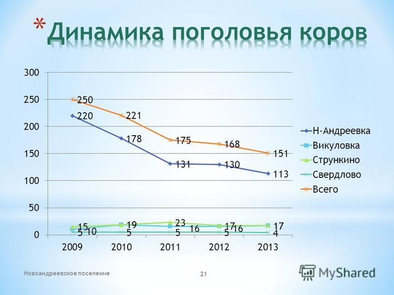 Новоандреевское поселение 21