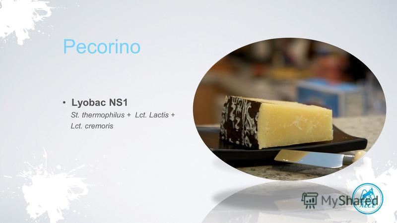 Pecorino Lyobac NS1 St. thermophilus + Lct. Lactis + Lct. cremoris