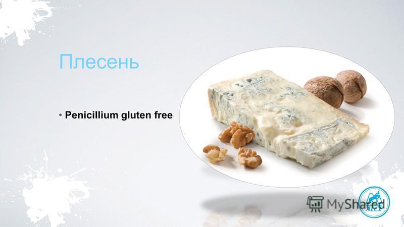 Плесень Penicillium gluten free