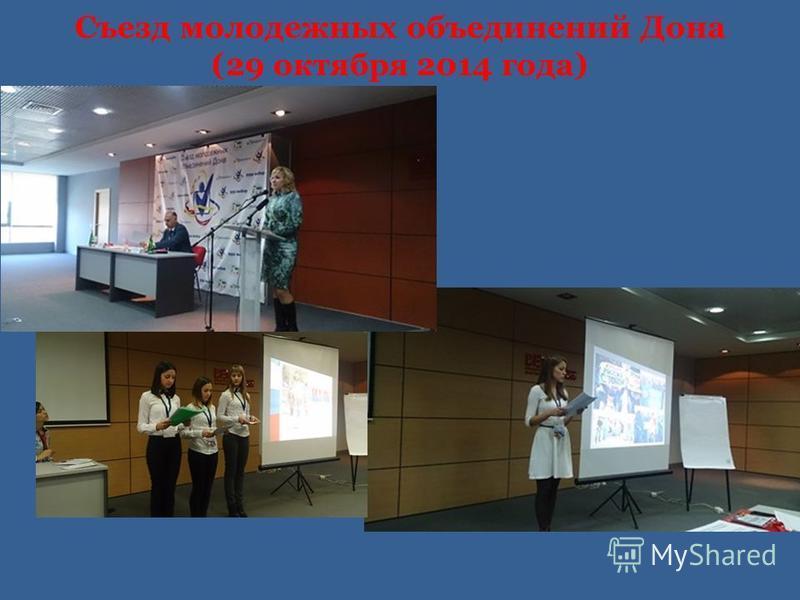Съезд молодежных объединений Дона (29 октября 2014 года)