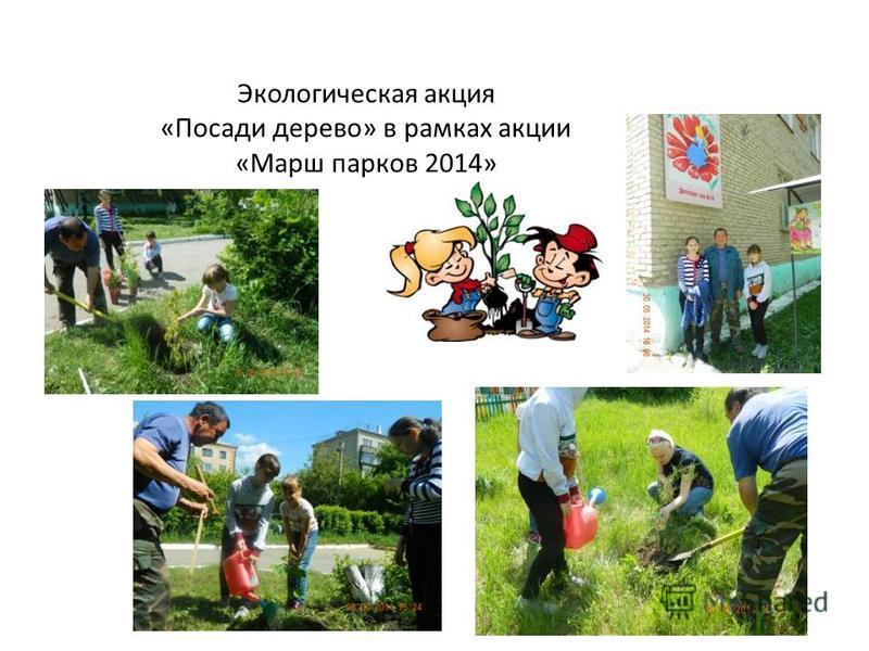 Экологическая акция «Посади дерево» в рамках акции «Марш парков 2014»