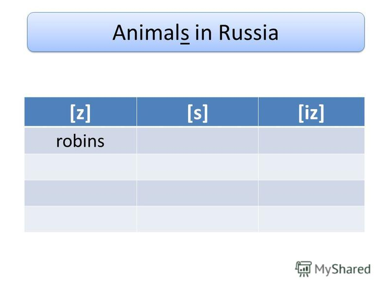 Animals in Russia [z][s][iz] robins