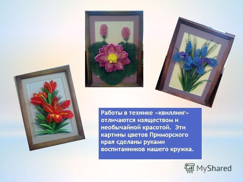 Работы в технике «квиллинг» отличаются изяществом и необычайной красотой. Эти картины цветов Приморского края сделаны руками воспитанников нашего кружка.