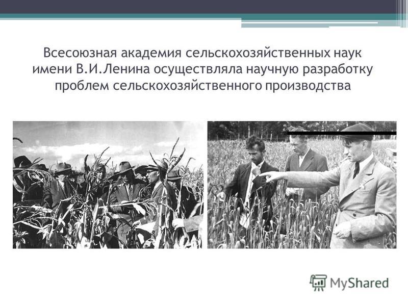 Всесоюзная академия сельскохозяйственных наук имени В.И.Ленина осуществляла научную разработку проблем сельскохозяйственного производства