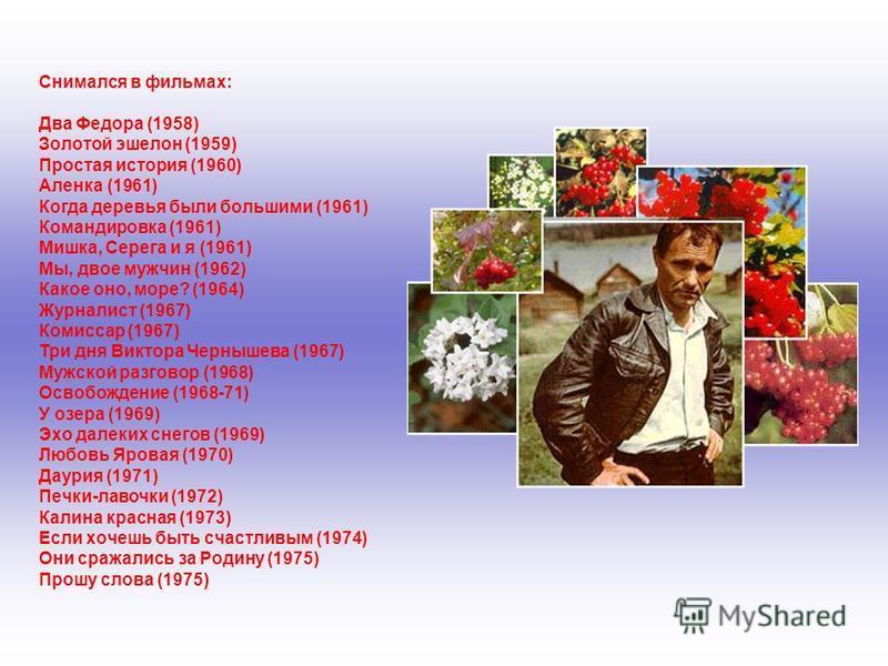 Снимался в фильмах: Два Федора (1958) Золотой эшелон (1959) Простая история (1960) Аленка (1961) Когда деревья были большими (1961) Командировка (1961) Мишка, Серега и я (1961) Мы, двое мужчин (1962) Какое оно, море? (1964) Журналист (1967) Комиссар