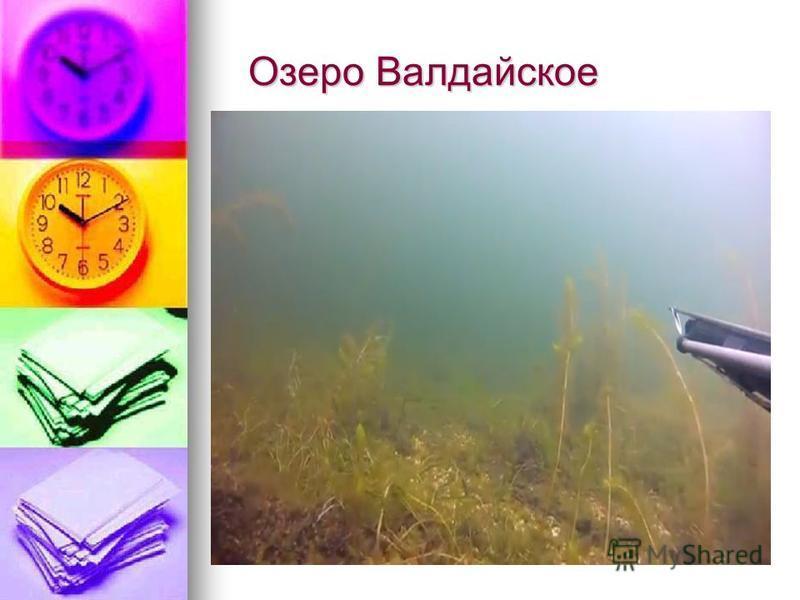Озеро Валдарайское