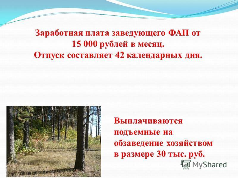 Заработная плата заведующего ФАП от 15 000 рублей в месяц. Отпуск составляет 42 календарных дня. Выплачиваются подъемные на обзаведение хозяйством в размере 30 тыс. руб.