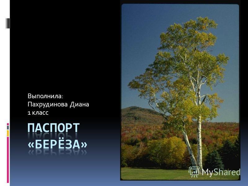 Выполнила: Пахрудинова Диана 1 класс
