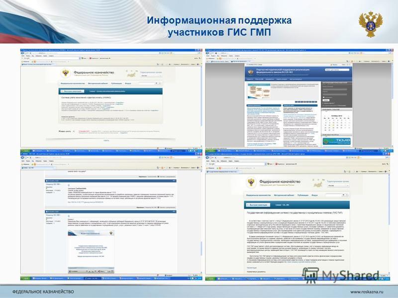 Информационная поддержка участников ГИС ГМП