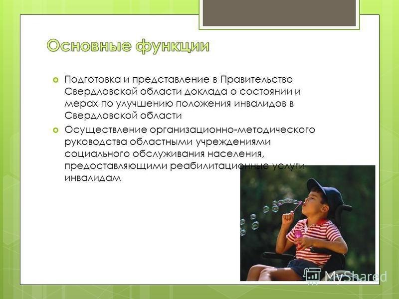 Подготовка и представление в Правительство Свердловской области доклада о состоянии и мерах по улучшению положения инвалидов в Свердловской области Осуществление организационно-методического руководства областными учреждениями социального обслуживани