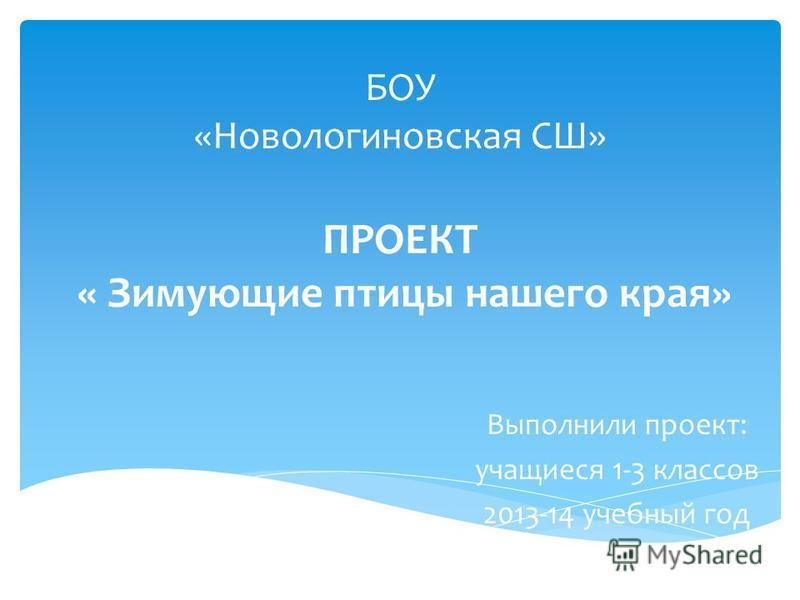 БОУ «Новологиновская СШ» ПРОЕКТ « Зимующие птицы нашего края» Выполнили проект: учащиеся 1-3 классов 2013-14 учебный год