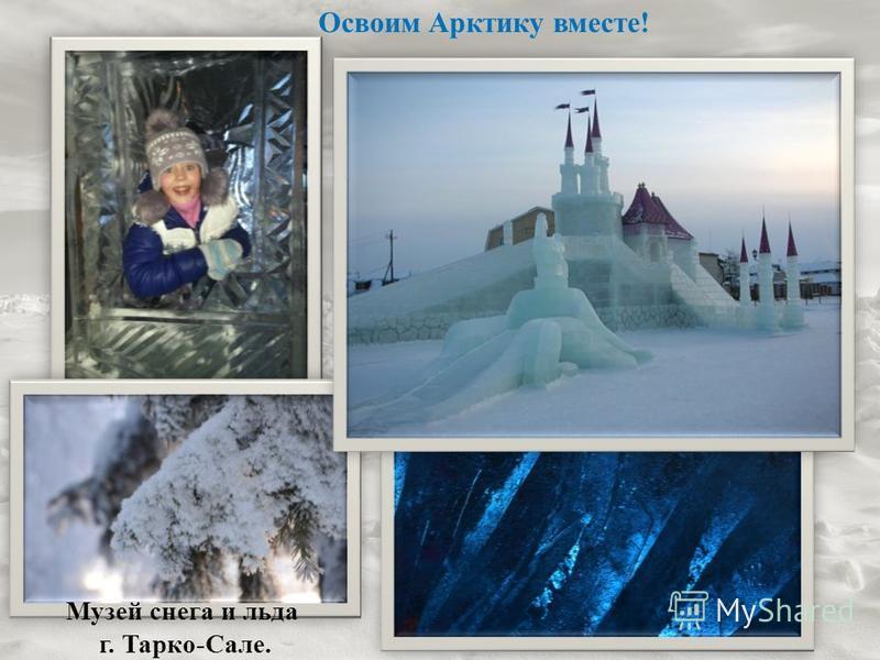 Музей снега и льда г. Тарко-Сале. Освоим Арктику вместе!