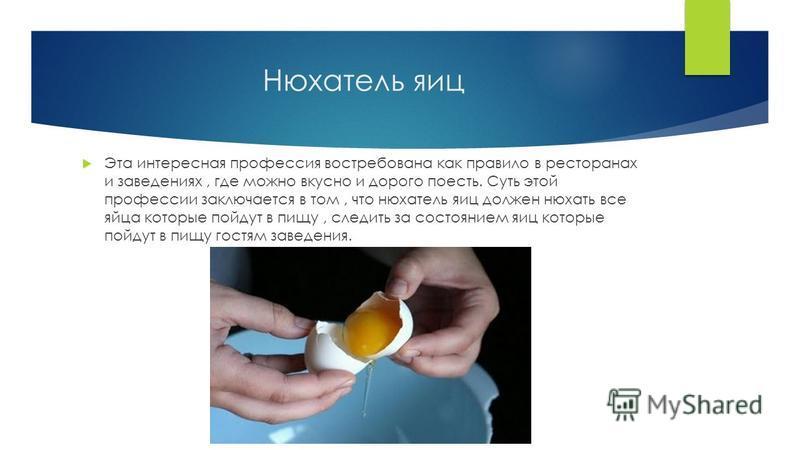 Нюхатель яиц Эта интересная профессия востребована как правило в ресторанах и заведениях, где можно вкусно и дорого поесть. Суть этой профессии заключается в том, что нюхатель яиц должен нюхать все яйца которые пойдут в пищу, следить за состоянием яи