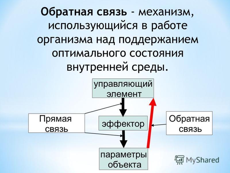 Обратная связь - механизм, использующийся в работе организма над поддержанием оптимального состояния внутренней среды.