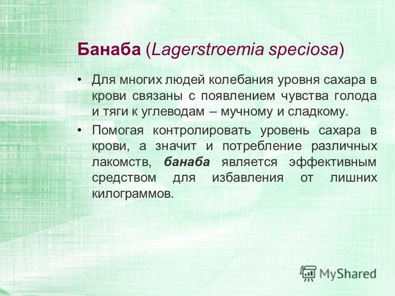 Банаба (Lagerstroemia speciosa) Для многих людей колебания уровня сахара в крови связаны с появлением чувства голода и тяги к углеводам – мучному и сладкому. Помогая контролировать уровень сахара в крови, а значит и потребление различных лакомств, ба