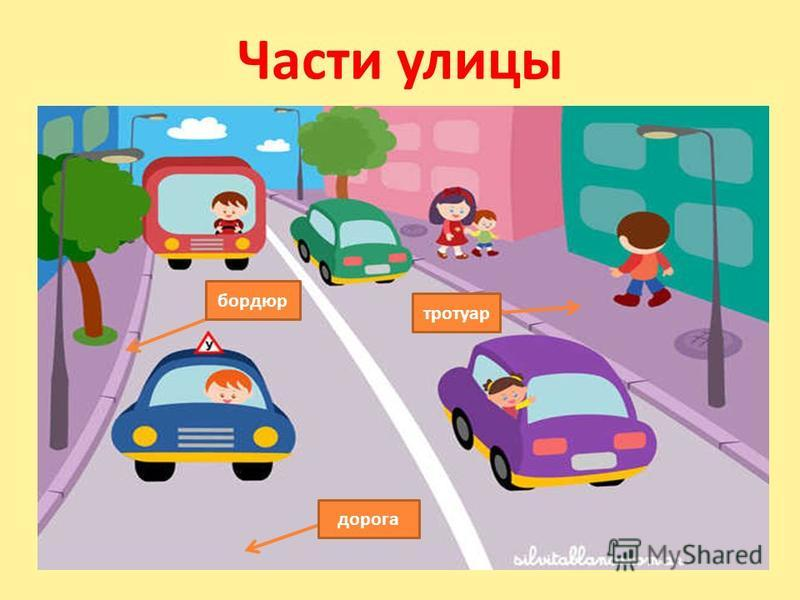 Части улицы бордюр дорога тротуар