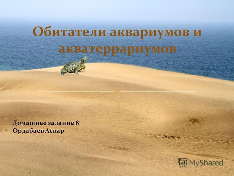 Домашнее задание 8 Ордабаев Аскар Обитатели аквариумов и акватеррариумов