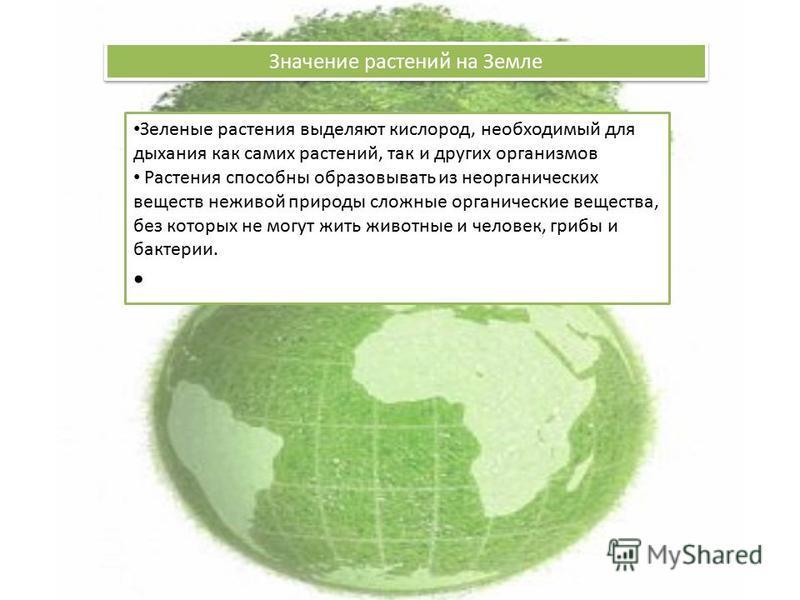 Значение растений на Земле Зеленые растения выделяют кислород, необходимый для дыхания как самих растений, так и других организмов Растения способны образовывать из неорганических веществ неживой природы сложные органические вещества, без которых не