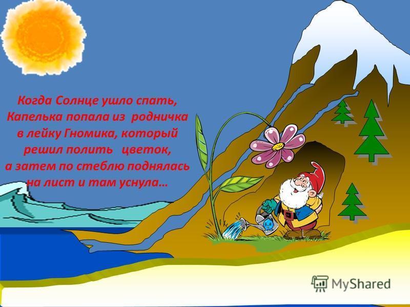 Когда Солнце ушло спать, Капелька попала из родничка в лейку Гномика, который решил полить цветок, а затем по стеблю поднялась на лист и там уснула…