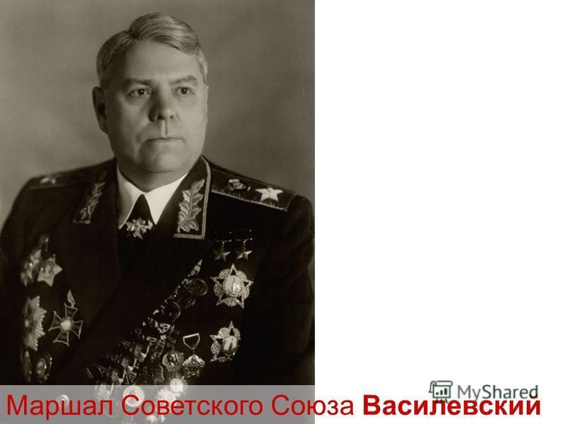 Маршал Советского Союза Василевский