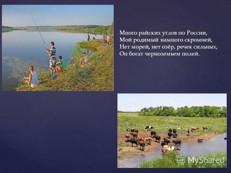 Много райских углов по России, Мой родимый намного скромней, Нет морей, нет озёр, речек сильных, Он богат черноземьем полей.