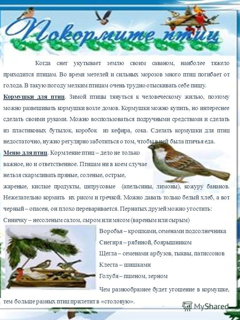 Когда снег укутывает землю своим саваном, наиболее тяжело приходится птицам. Во время метелей и сильных морозов много птиц погибает от голода. В такую погоду мелким птицам очень трудно отыскивать себе пищу. Кормушки для птиц. Зимой птицы тянуться к ч