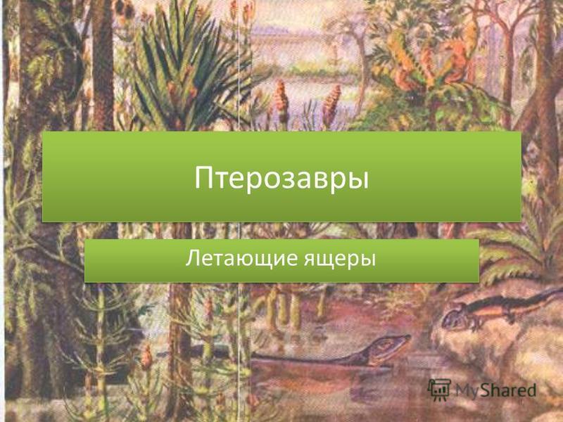 Птерозавры Летающие ящеры