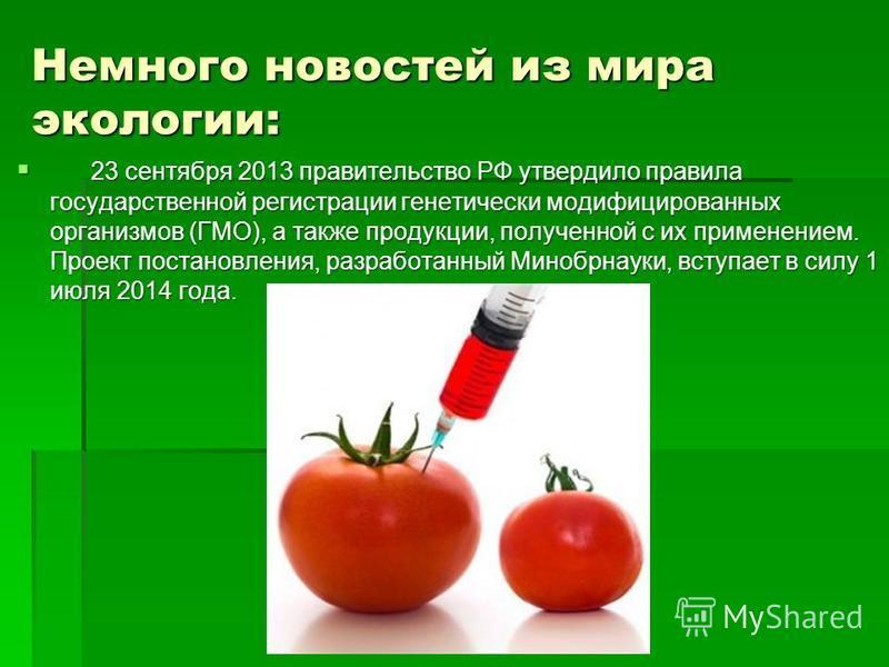Немного новостей из мира экологии: 23 сентября 2013 правительство РФ утвердило правила государственной регистрации генетически модифицированных организмов (ГМО), а также продукции, полученной с их применением. Проект постановления, разработанный Мино