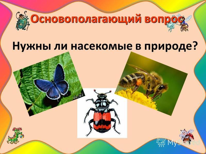 Основополагающий вопрос Нужны ли насекомые в природе?