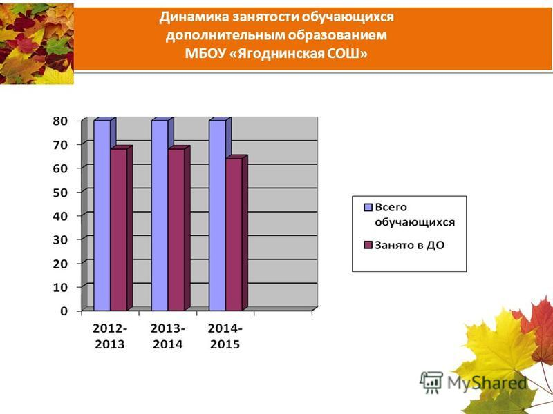 Динамика занятости обучающихся дополнительным образованием МБОУ «Ягоднинская СОШ»