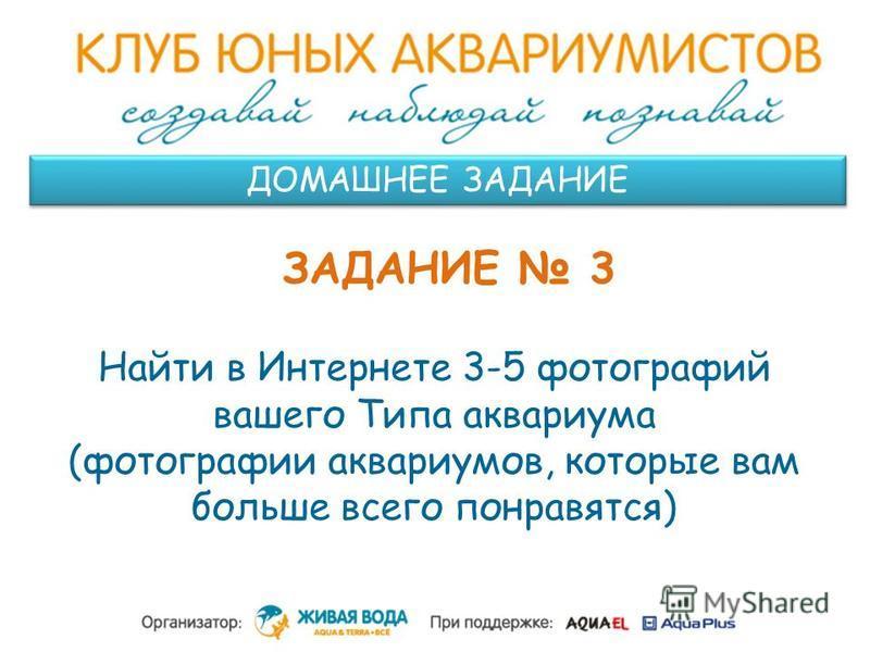 ДОМАШНЕЕ ЗАДАНИЕ ЗАДАНИЕ 3 Найти в Интернете 3-5 фотографий вашего Типа аквариума (фотографии аквариумов, которые вам больше всего понравятся)
