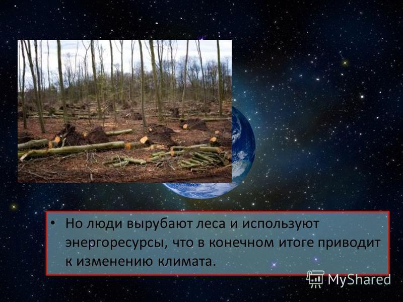 Но люди вырубают леса и используют энергоресурсы, что в конечном итоге приводит к изменению климата.