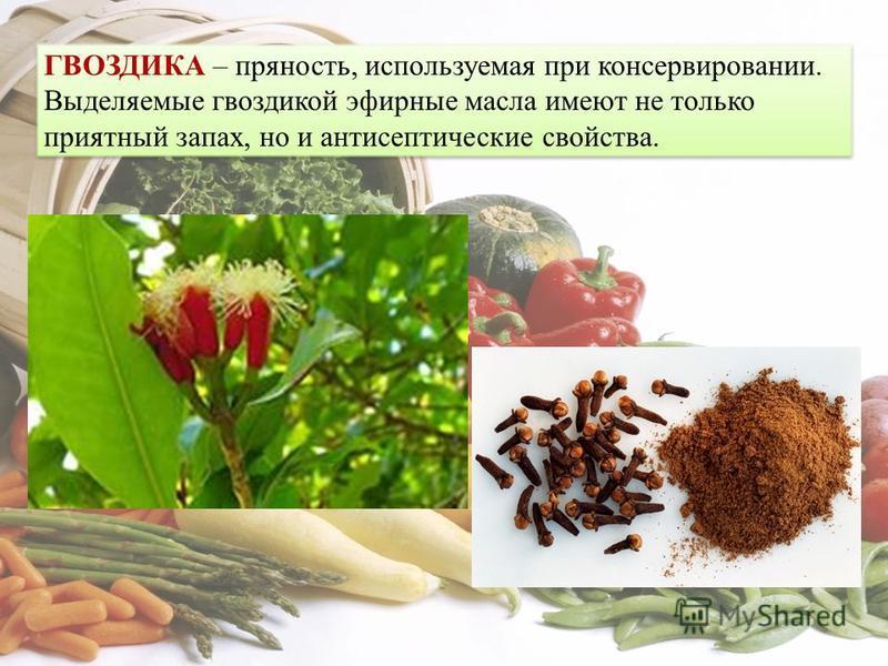 ГВОЗДИКА – пряность, используемая при консервировании. Выделяемые гвоздикой эфирные масла имеют не только приятный запах, но и антисептические свойства.