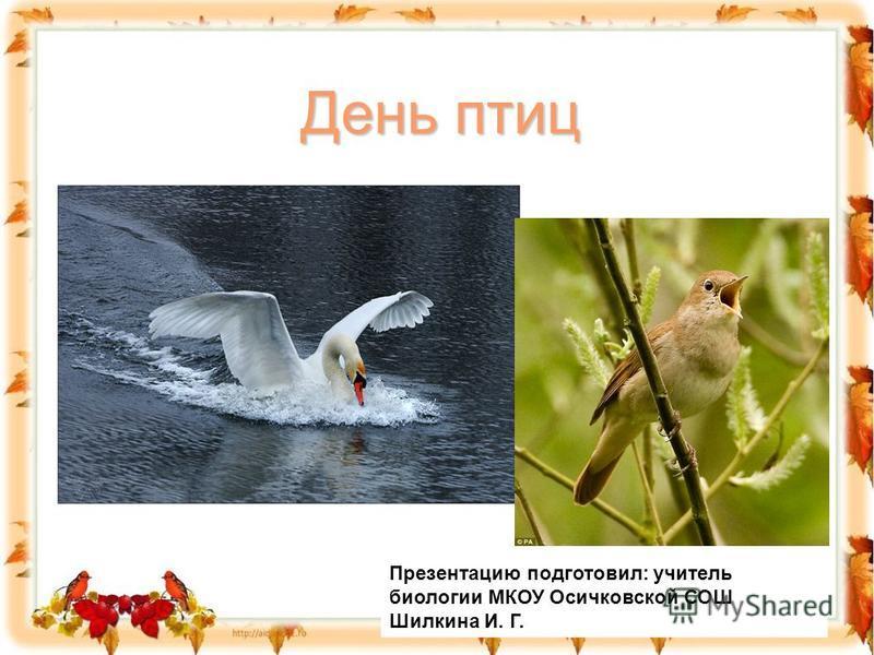 День птиц Презентацию подготовил: учитель биологии МКОУ Осичковской СОШ Шилкина И. Г.Пре