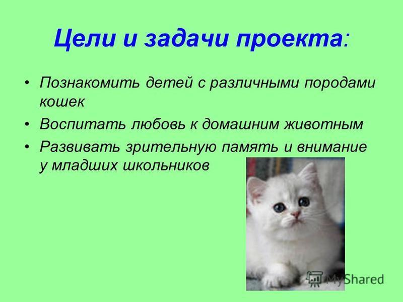 Цели и задачи проекта: Познакомить детей с различными породами кошек Воспитать любовь к домашним животным Развивать зрительную память и внимание у младших школьников