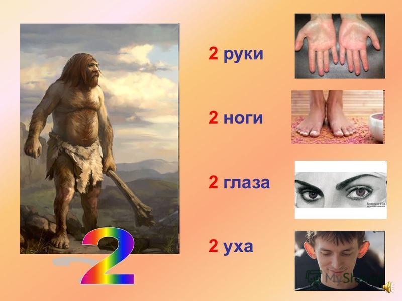 2 руки 2 ноги 2 глаза 2 уха