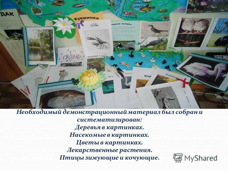 Необходимый демонстрационный материал был собран и систематизирован: Деревья в картинках. Насекомые в картинках. Цветы в картинках. Лекарственные растения. Птицы зимующие и кочующие.