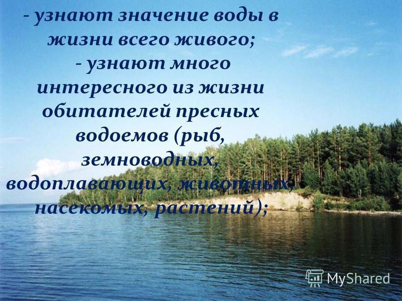 - узнают значение воды в жизни всего живого; - узнают много интересного из жизни обитателей пресных водоемов (рыб, земноводных, водоплавающих, животных, насекомых, растений);