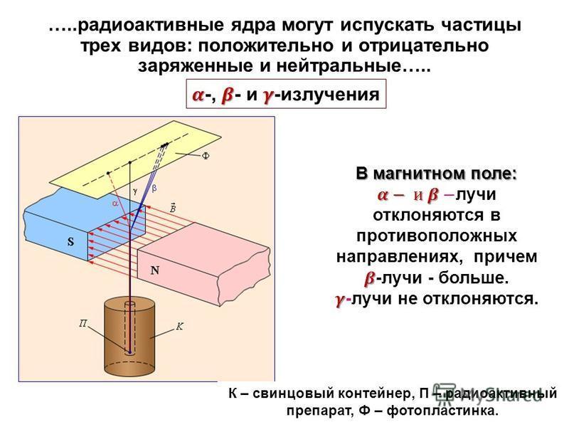 …..радиоактивные ядра могут испускать частицы трех видов: положительно и отрицательно заряженные и нейтральные….. К – свинцовый контейнер, П – радиоактивный препарат, Ф – фотопластинка.