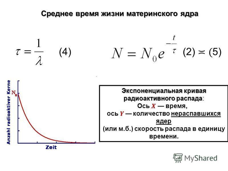 Среднее время жизни материнского ядра (4)(4)