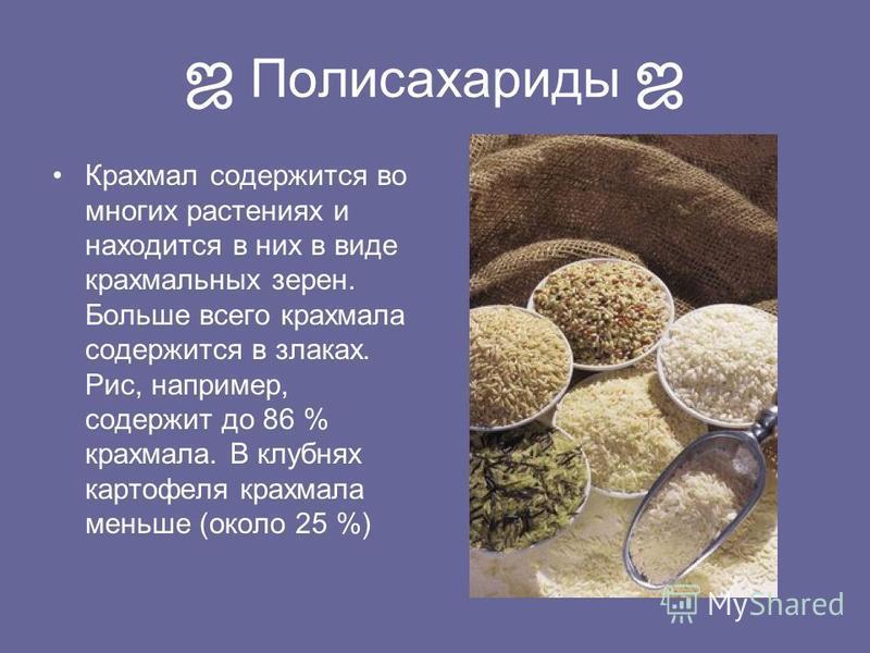 Полисахариды Крахмал содержится во многих растениях и находится в них в виде крахмальных зерен. Больше всего крахмала содержится в злаках. Рис, например, содержит до 86 % крахмала. В клубнях картофеля крахмала меньше (около 25 %)